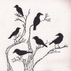 crow flock oak