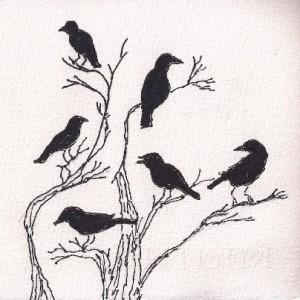 crow flock oak