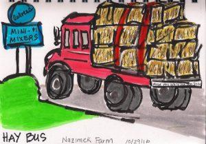 hay-bus-1